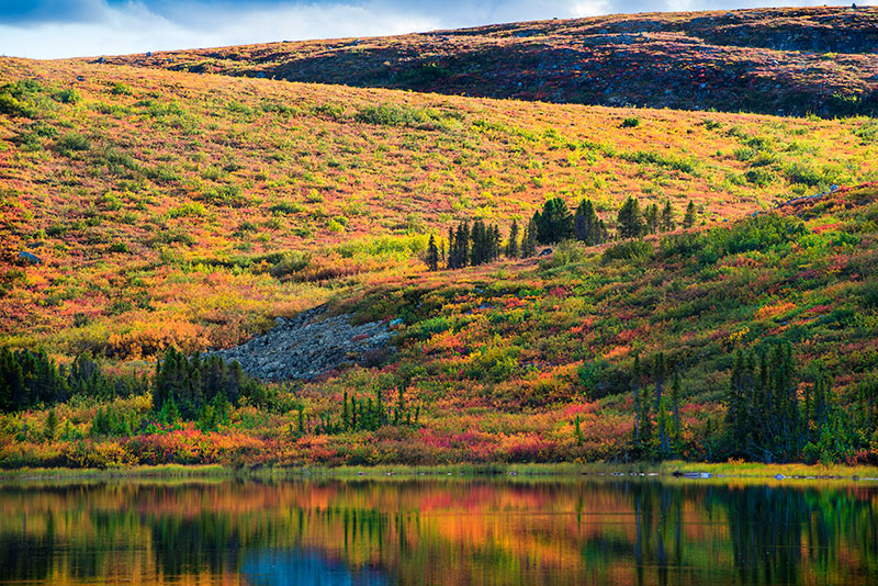 Beautiful landscape rolling hills in autumn colours with reflections in water